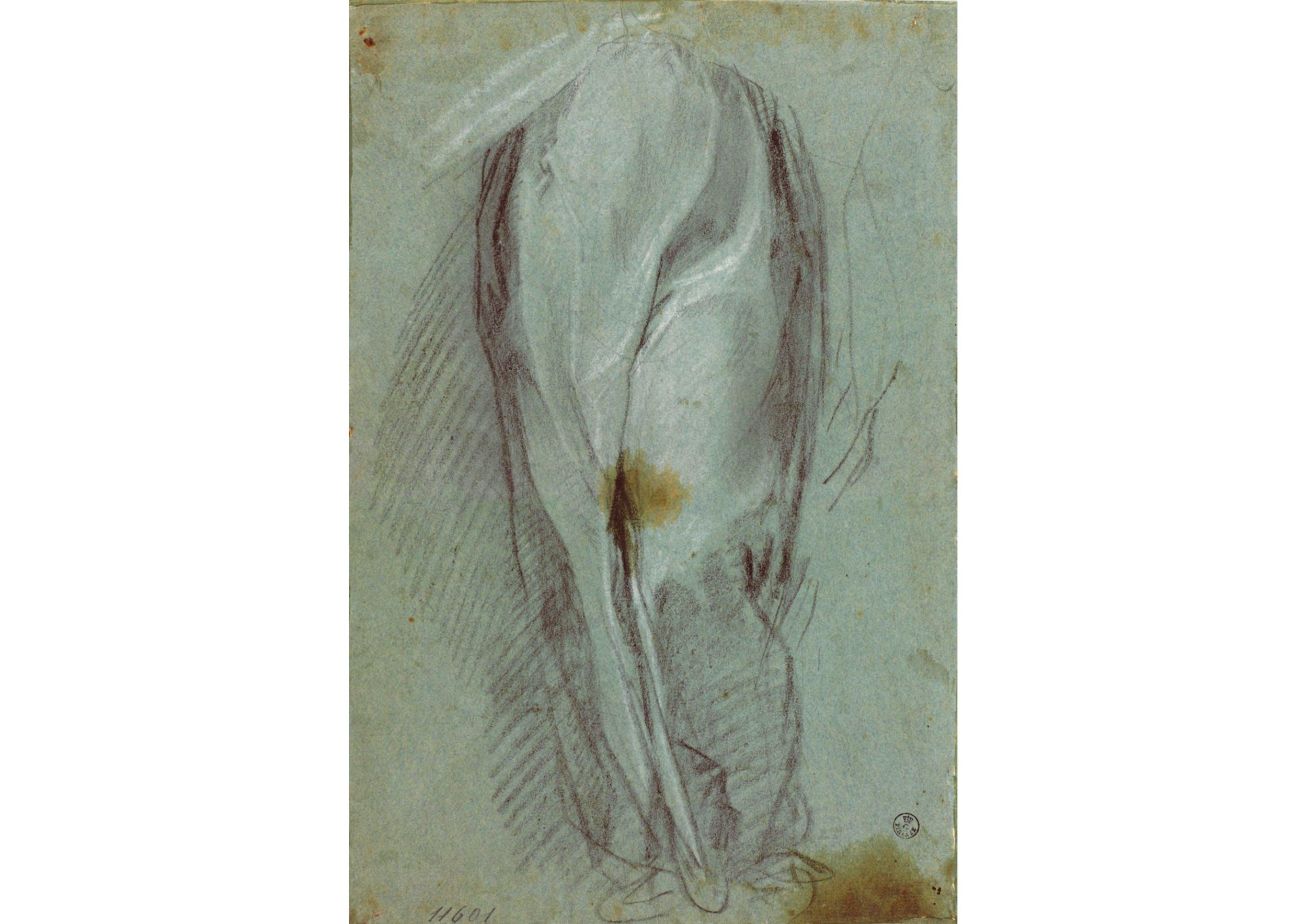 Carboncino, biacca (carbonato basico di piombo), carta cerulea (306 x 201 mm.) - Inv. 11601 F