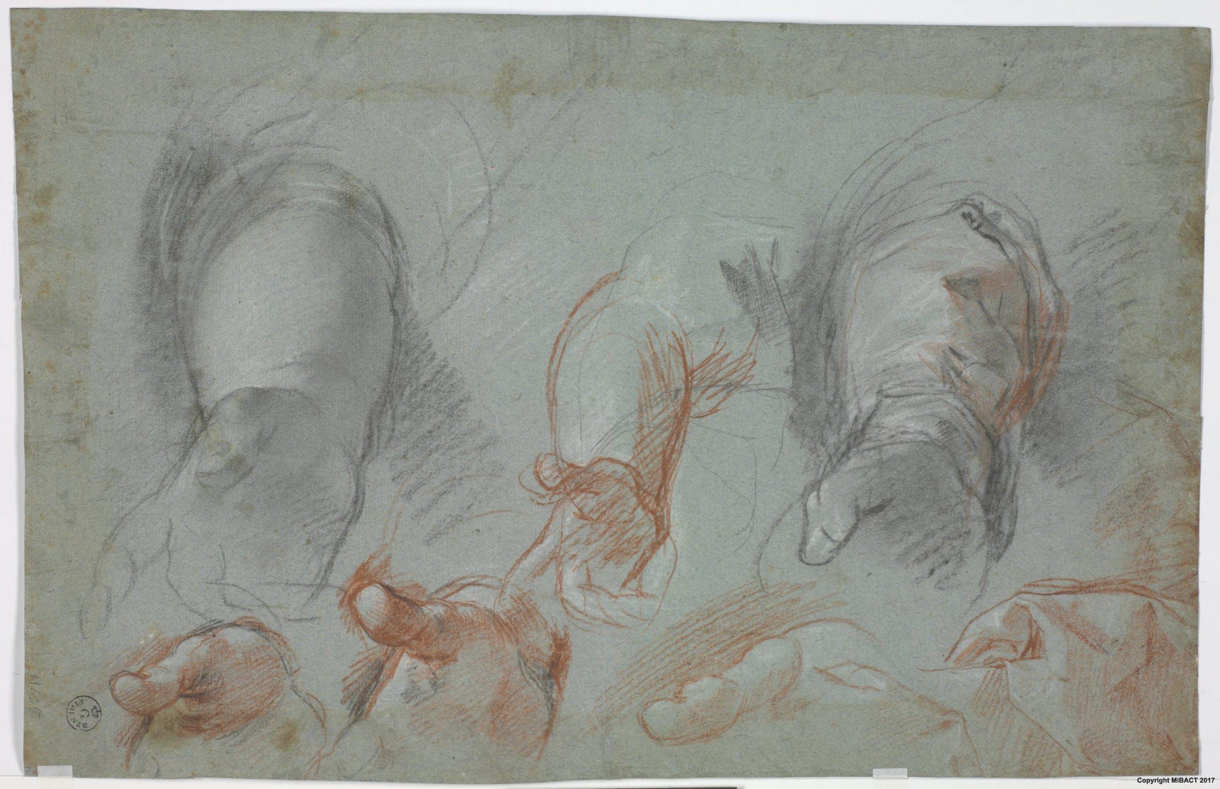 Pietra nera, pietra rossa, biacca (carbonato basico di piombo), carta cerulea (269 x 420 mm.) - Inv. 11635 F recto