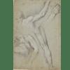 Studio parziale di due figure maschili nude, una con un braccio alzato, l'altra a terra e studi della gamba e del braccio della prima