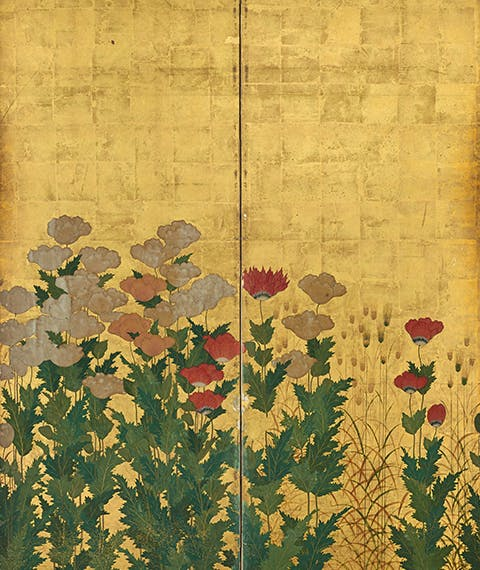 The Japanese Renaissance. Nature in painted screens from the 15th to the 17th centuries