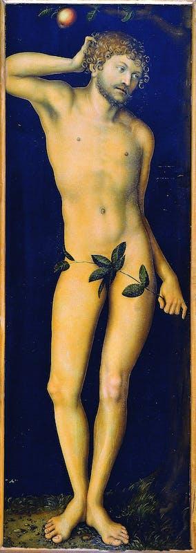 Lucas Cranach il Vecchio - Adamo