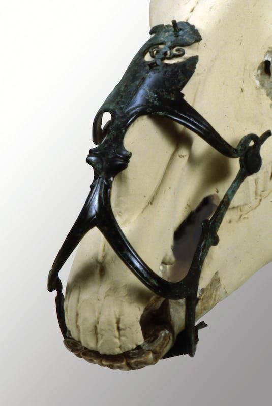 Museruola per cavallo, epoca ellenistica (IV secolo a.C) Bronzo Este, Museo Nazionale Atestino