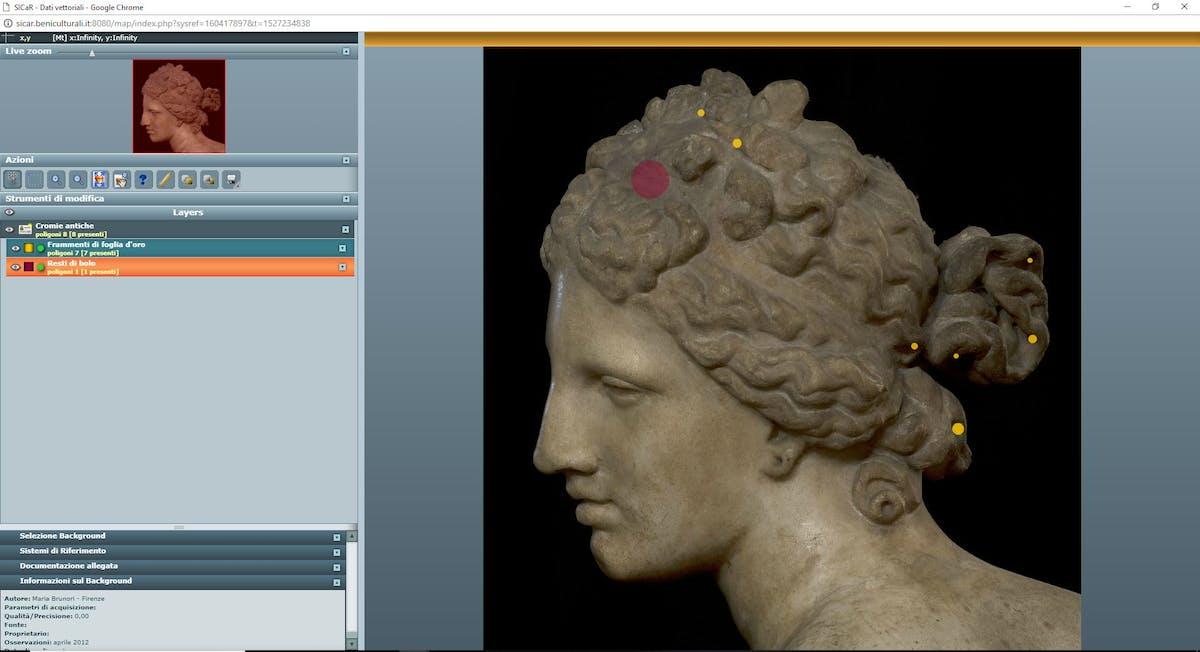 Fig. 8 Venere de' Medici (inv. 1914 n. 224), Tribuna, Sistema di riferimento della testa con mappatura delle cromie antiche - Medici Venus (inv. 1914 no. 224), Tribuna, reference system of the head with the mapping of ancient colours.