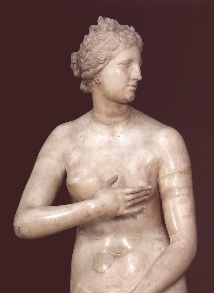 Un database on-line per la conservazione e lo studio delle sculture antiche degli Uffizi
