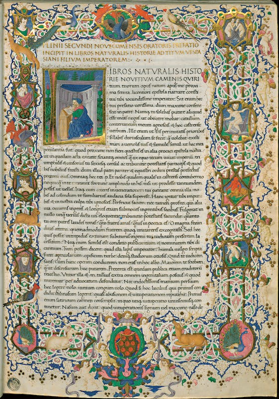 Plinio il Vecchio (Como 23 d.C. - Stabia 79 d.C.) Ricciardo di Nanni, miniatore Naturalis Historia: ritratto ideale di Plinio 1458 manoscritto membranaceo, miniatura a bianchi girari, f. 3r Biblioteca Medicea Laurenziana, Firenze I Pliny the Elder (Como 23 - Stabia 79) Ricciardo di Nanni (illumination) Naturalis Historia: Pliny's imaginary portrait 1458 parchment Ms., with a bianchi girari (white vine meanderings), f. 3r Biblioteca Medicea Laurenziana, Firenze I