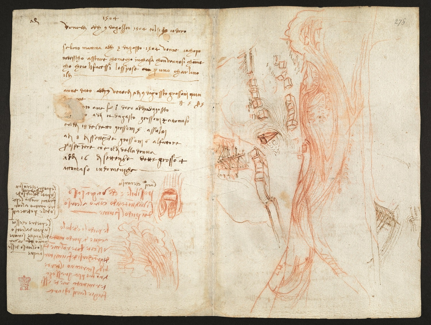 Картинки по запросу Water as Microscope of Nature. Leonardo da Vinci's Codex Leicester