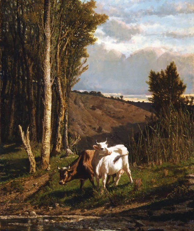Una Pastura