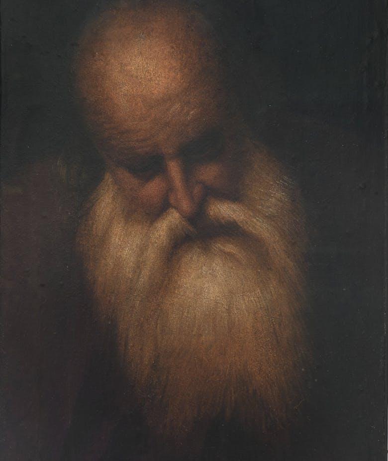 Testa di uomo anziano