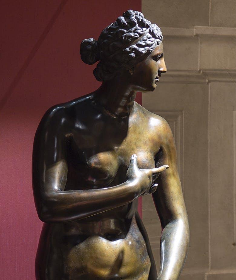 Plasmato dal fuoco. La scultura in bronzo nella Firenze degli ultimi Medici