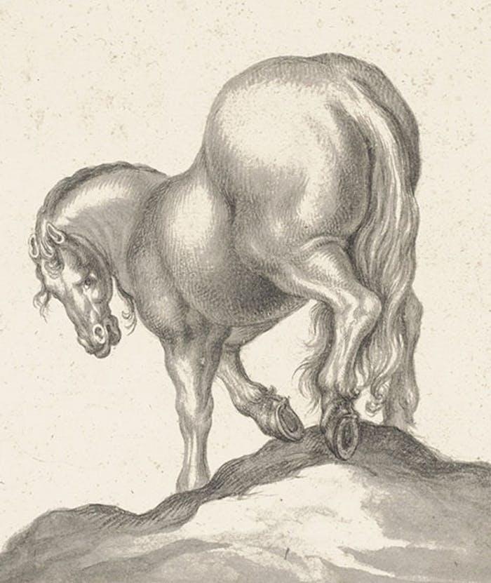 Dalle aste di New York agli Uffizi: quattro disegni del Volterrano e di GB Foggini