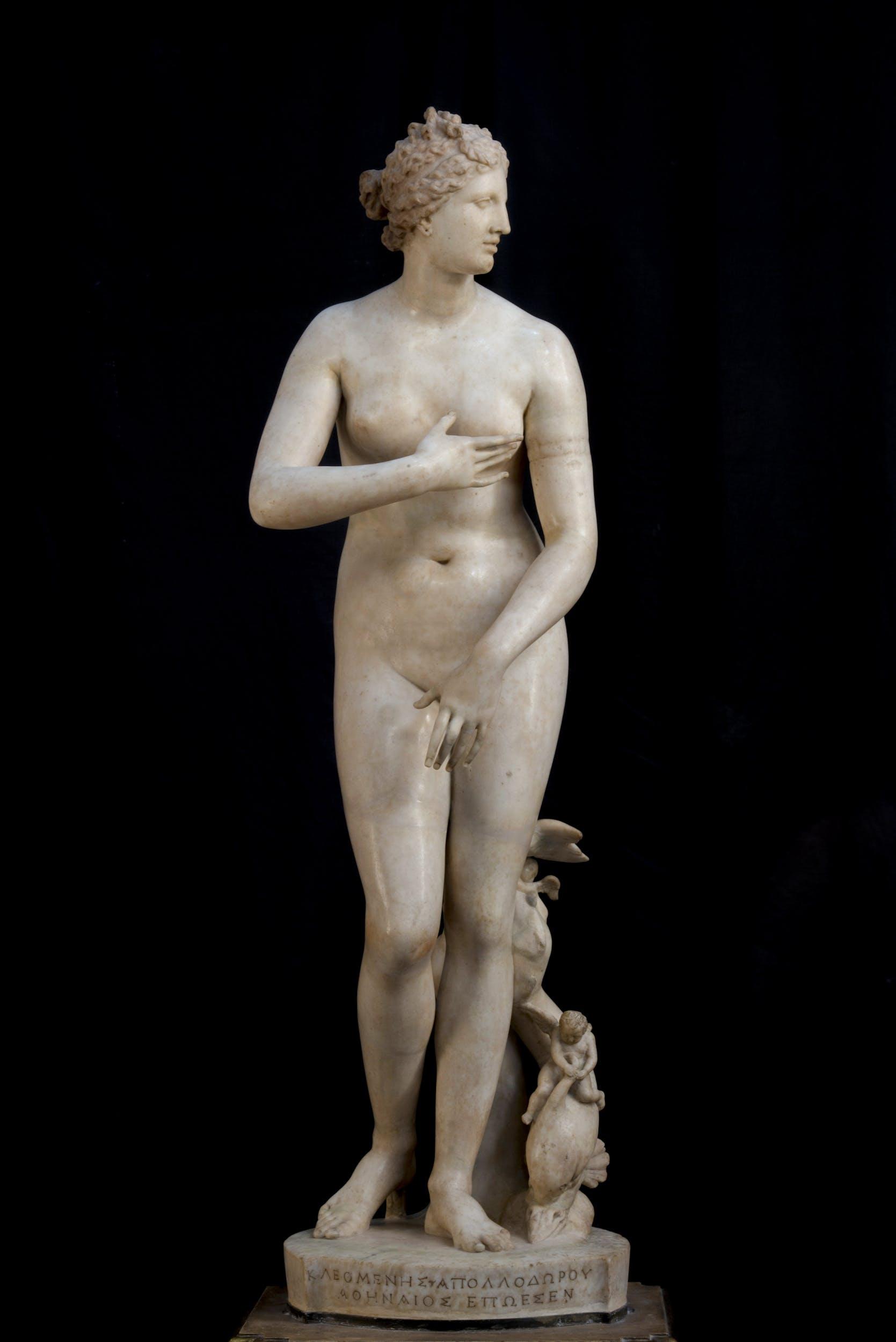 Venere de' Medici, Firenze, Gallerie degli Uffizi, Galleria delle Statue e delle Pitture.