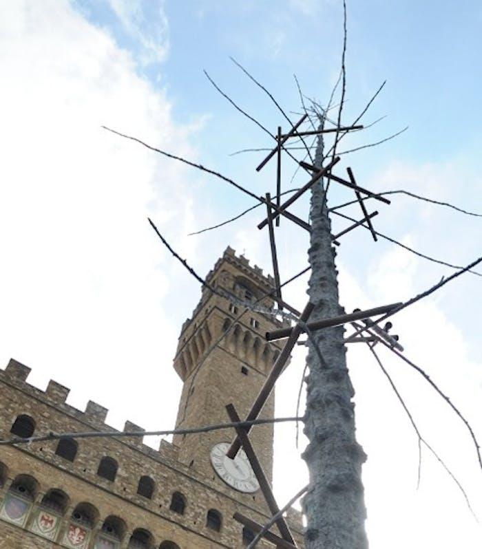 """Dantedì: In Piazza Signoria sorge un albero del """"Paradiso"""" di Giuseppe Penone"""